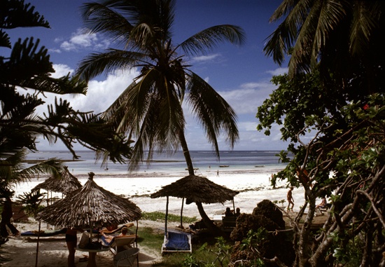 Coconut palms fringe Diani beach on South Coast