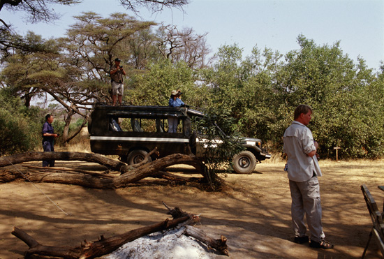 People watching elephants coming into the camp