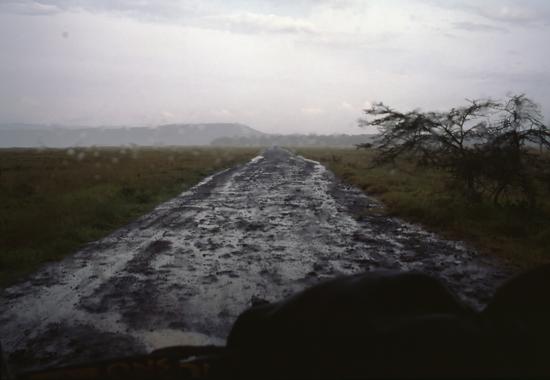 Rainy season in Lake Nakuru National Park