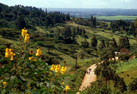 Nandi hills in western kenya