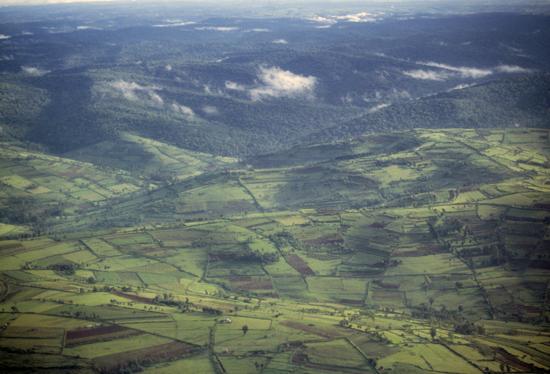 Aerial view of western Kenya