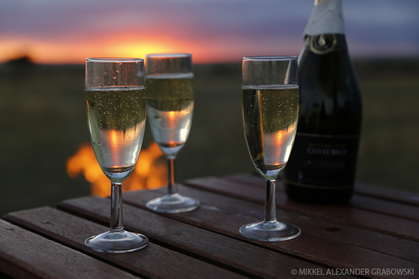 champagne by a fire on the savanna