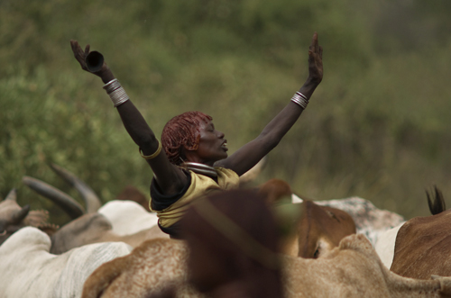 bulljumping ceremony in Ethiopia