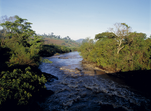 Yala river in Kenya