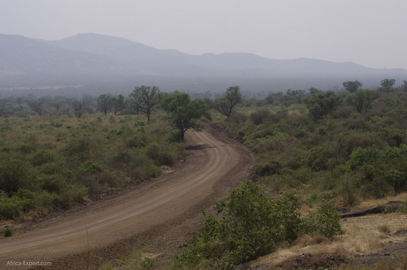 The road through Mago National Park