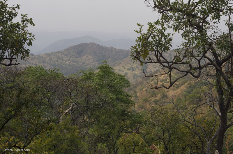 Mago national park in lower Omo valley