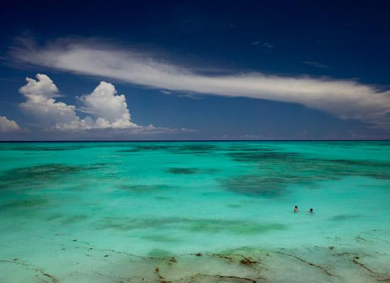 Zanzibar offers world class swimming in the warm Indian Ocean